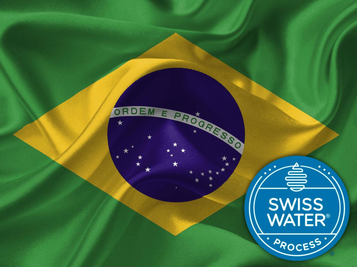 Brazilian Oberon Decaf (Swiss Water Processed)