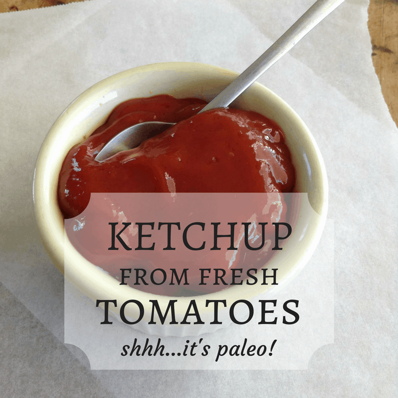 """Real Deal"" Ketchup From Fresh Tomatoes"