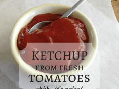 how to make ketchup from fresh tomatoes