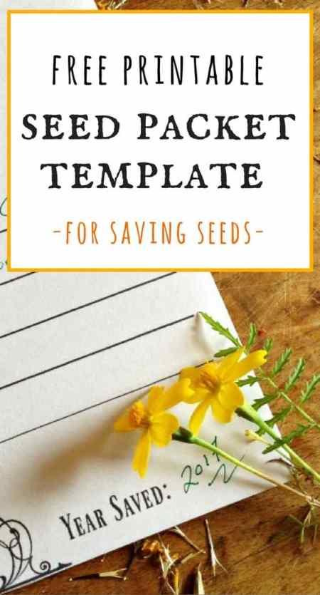 free printable seed packet