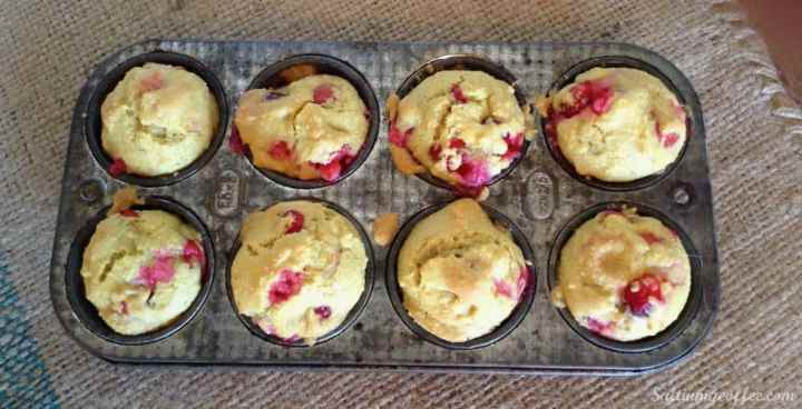 paleo cranberry nut muffins