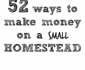making money homesteading