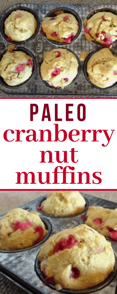 PERFECT Paleo Cranberry Nut Muffins Recipe...seriously my favorite fall muffin!