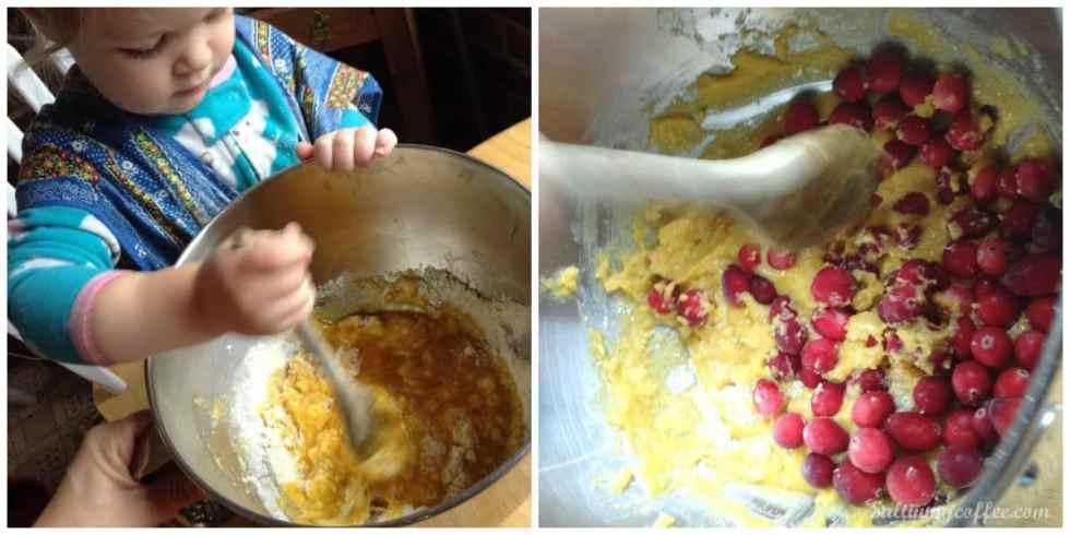 Paleo cranberry muffin recipe