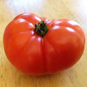 Soldaki Heirloom Tomato