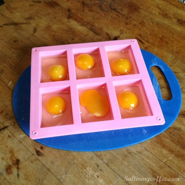How to freeze chicken eggs