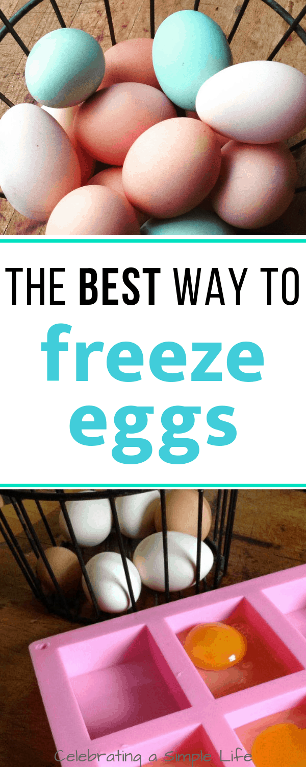 the best way to freeze eggs