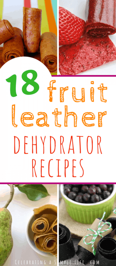 fruit leather dehydrator recipes