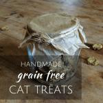 handmade grain free cat treats