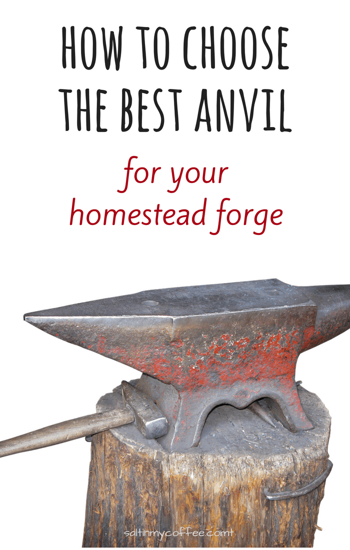 Here's how to choose the best anvil for your homestead forge, Learn everything you should consider when selecting the right anvil for your needs!