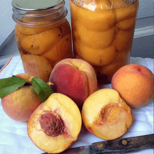 canning peaches at home
