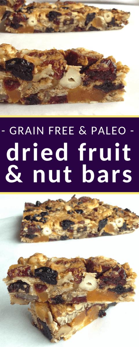 paleo dried fruit and nut bars