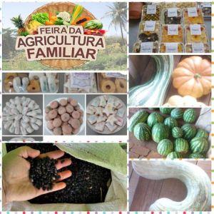 feira-agricultura-familiar-300x300 Sábado é dia de Feira!