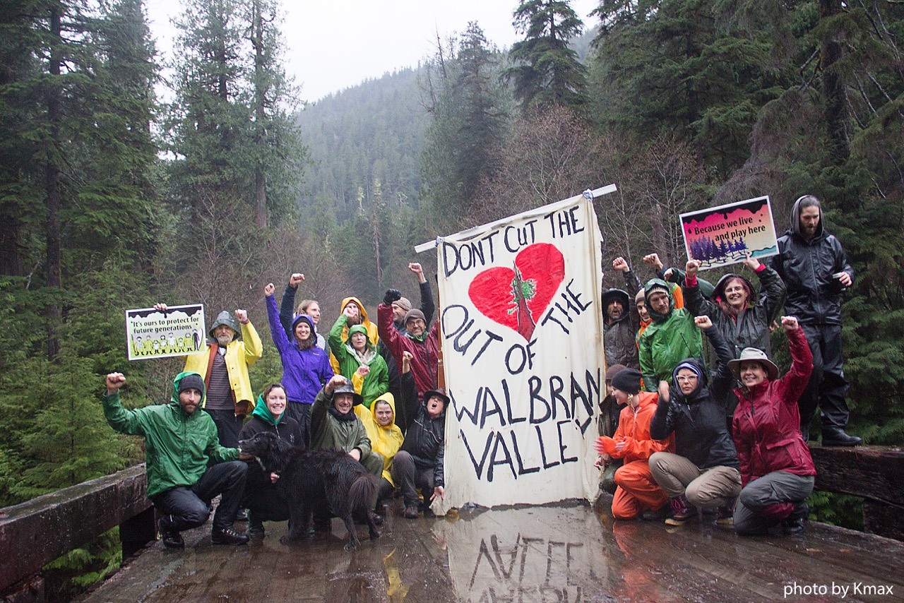 Save the Walbran Forest