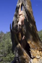 grace-in-a-tree2012-10b