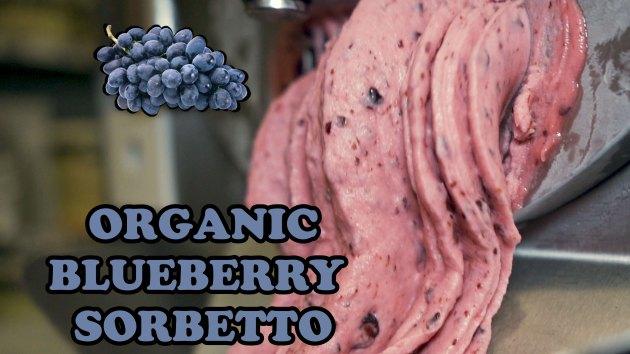 ORGANIC-BLUEBERRY-SORBETTO-FLAVOUR