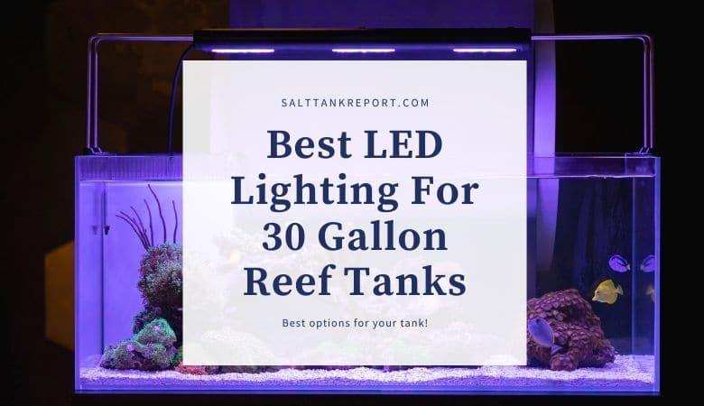 best led lighting for 30 gallon reef
