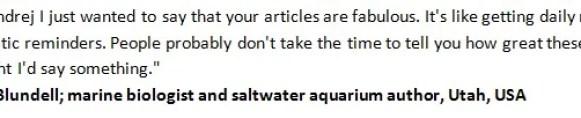 Saltwater Aquarium Fish and Coral review