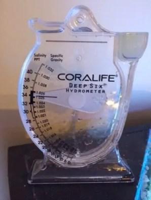 saltwater aquarium water parameters testing