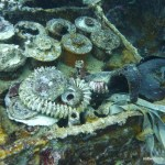 Gas Mask & Ammunition, Helmet Wreck, Palau