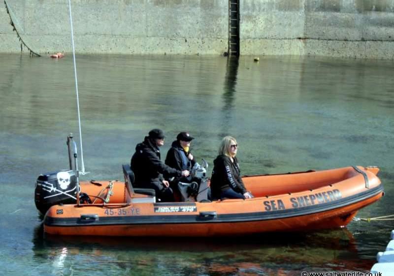 Sea Shepherd UK; Seals & Salmon Fisheries