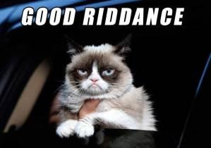 Grumpy cat dies – no thanks to you