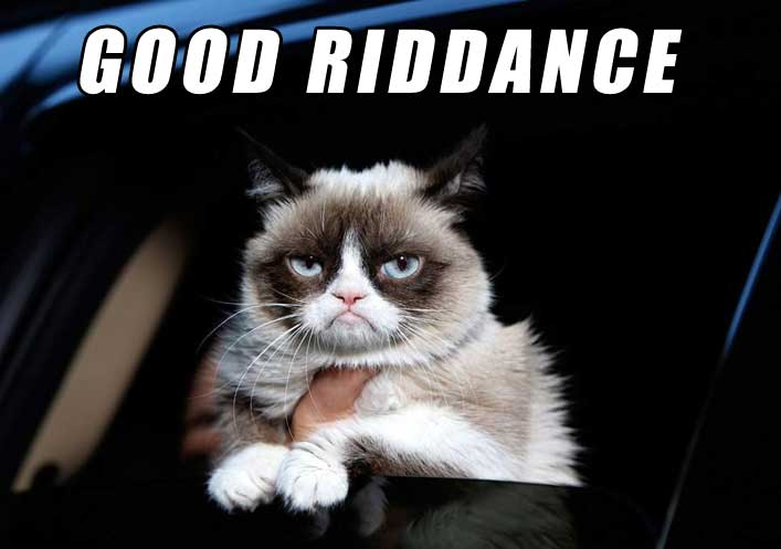 Grumpy cat dies - no thanks to you