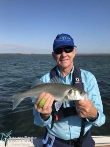 bass fishing 2018