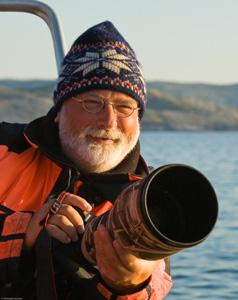 Polarfuchs Fotografie Peer von Wahl