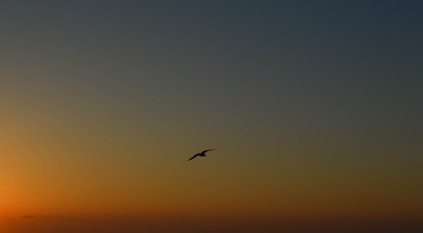 wabasso sunrise march 8 2013 (7)