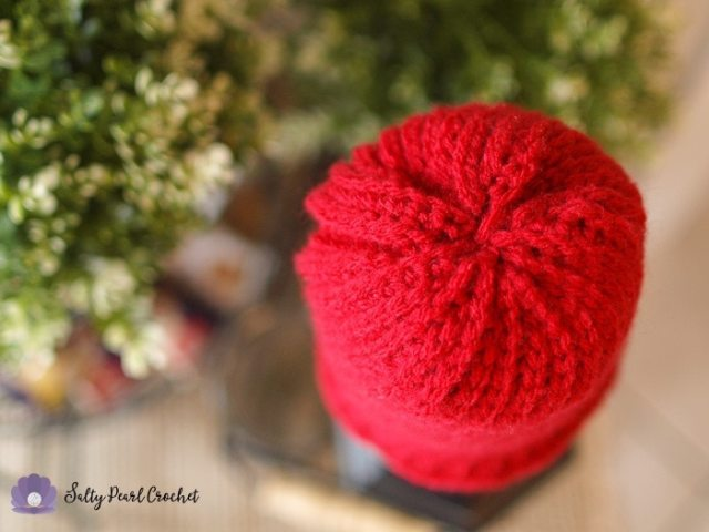 Find this easy and free crochet pattern at SaltyPearlCrochet.com!
