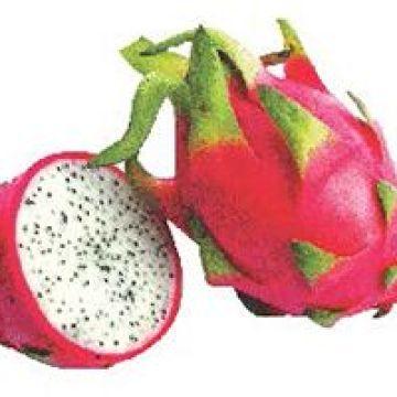 Nutrición, Fruta del Dragón