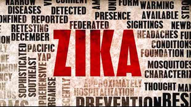 FDA research to help speed development of the Zika virus vaccines and therapeutics