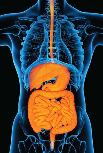 What is Crohn's Disease ?