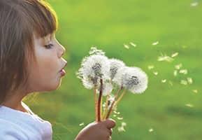 Alergias Sintomas y Causas
