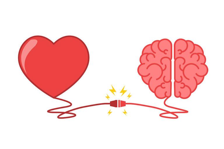 Corazón y cerebro unidos por un conector. Salud física y emociones