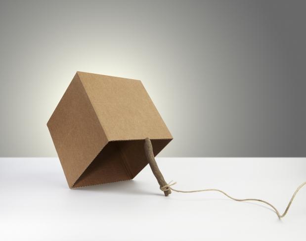 Trampa elaborada con una caja, un palo y un cordel
