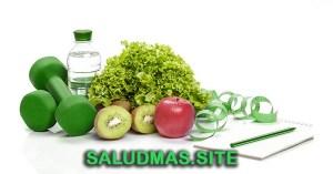 La Nutrición Definición Tipos Y Características