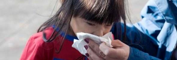 Como Subir Las Defensas Y Mejorar El Sistema Inmunológico