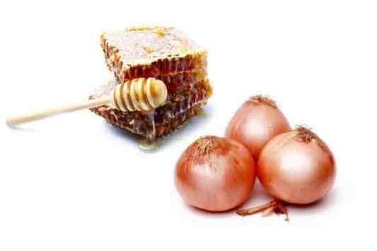 cebolla con miel
