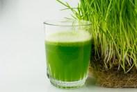 Beneficios saludables de beber jugo de pasto de trigo