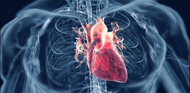 Superalimentos para bajar la presión arterial alta
