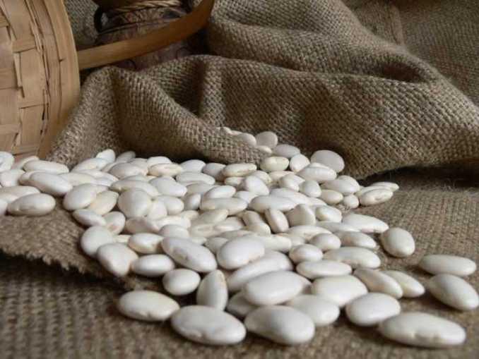 Frijol Blanco y la pérdida de peso Frijol blanco y proteínas que contiene Propiedades saludables del frijol blanco