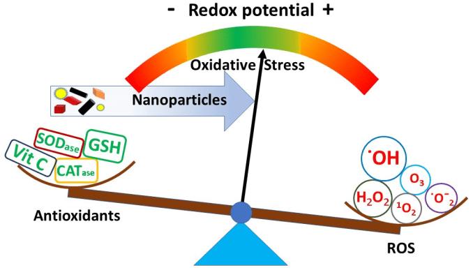 Estrés Oxidativo , radicales libres, antioxidantes
