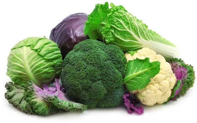 ¿QUé son los vegetales crucíferos?
