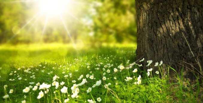 Beneficios de la luz solar