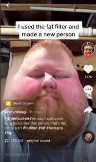fat filter tiktok