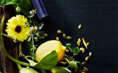 Lemon Verbena Body Polish Special