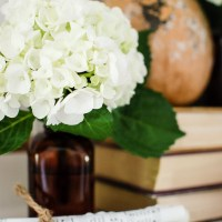 Books and Pages Fall Farmhouse Tour With A Free Printable
