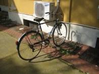 Le rastrelliere per biciclette all'interno del San Matteo